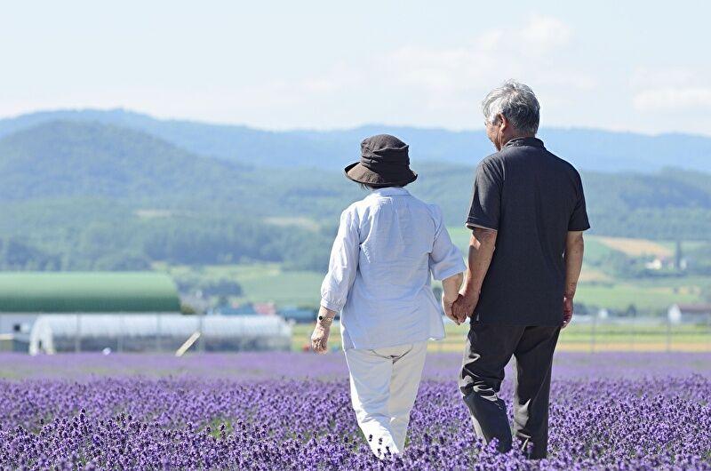 手をつなぎながらラベンダー畑を歩くカップル画像