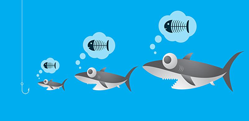 釣り針を餌と勘違いするサイズの違うサメの画像です
